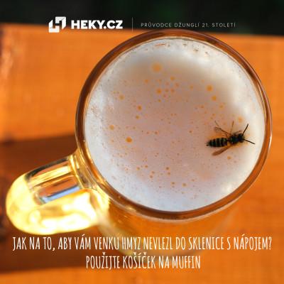 hmyz v pití