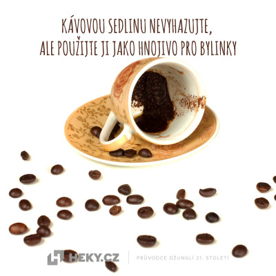 kávová sedlina