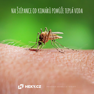 štípance od komárů