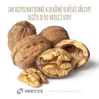 dobré a zkažené vlašské ořechy