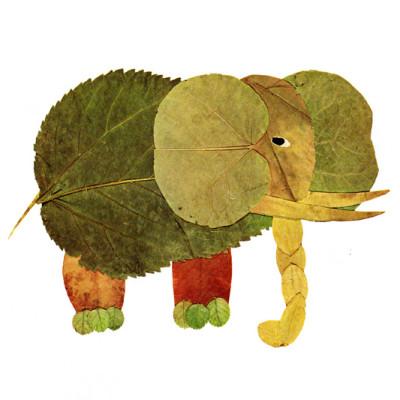 slon_listí