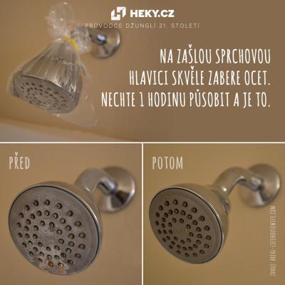 heky-zasla-sprchova-hlavice-ocet
