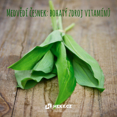 zdroj vitamínů